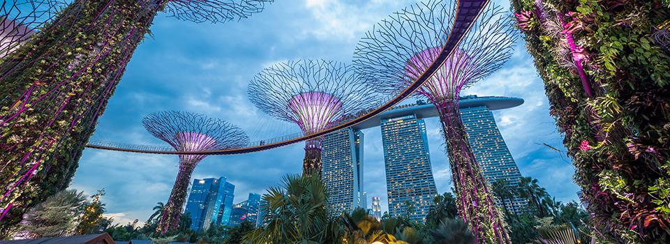 singapur_.jpg
